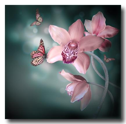 ButterfliesOrchids400Seqoyashutterstock_124491652