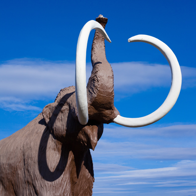 Mammoth400Pi-Lensshutterstock_68528674Mammoth