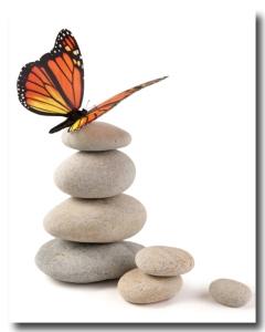 ButterflyonStonesOlga_Lyubkin450shadowshutterstock_181794437 copy