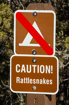 caution-rattlesnakes-1110113__340
