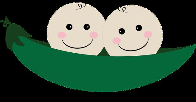 twins-1147613_960_720 (1)
