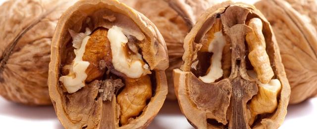 walnuts-2312506_960_720